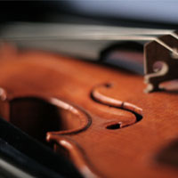 String Sample Library Roundup